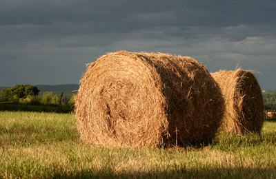 hay rolls in the sunset